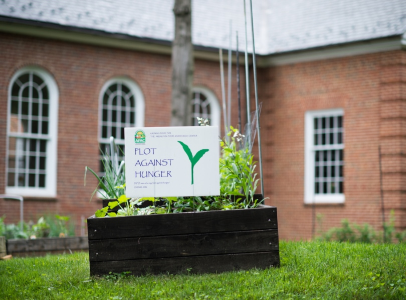a plot against hunger sign in front of a garden bed by a brick building